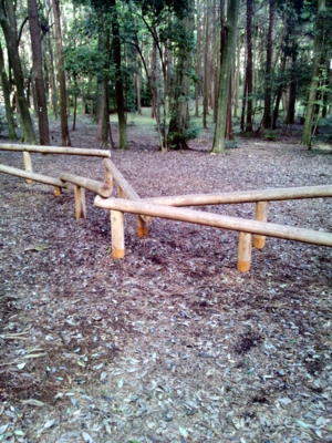 Wooden balance beams